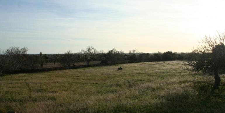 Venta terreno Alqueria Blanca