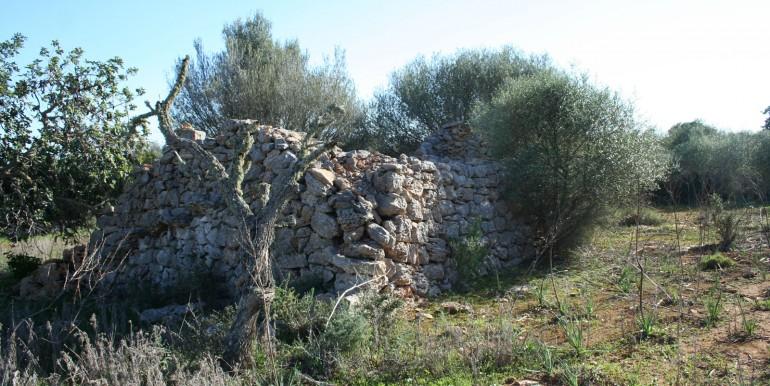 Barraca ruinas