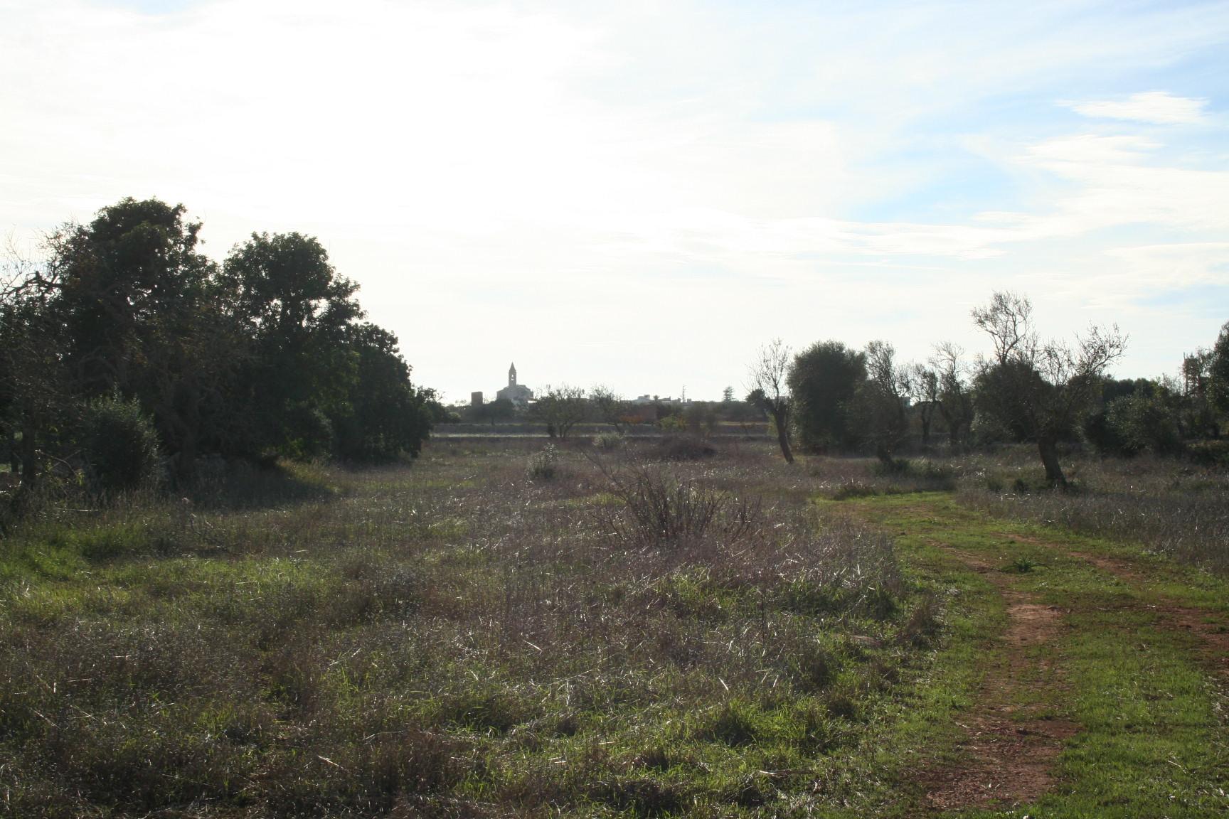 Terreno en Santanyi