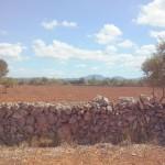 Venta terreno Campos